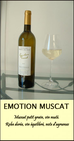 EMOTION MUSCAT CARTE