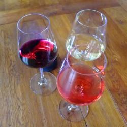verres de vins vents du sud