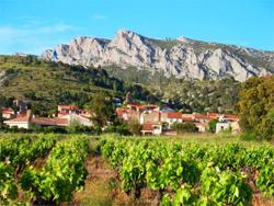 village-vignes-domaine-vents-du-sud