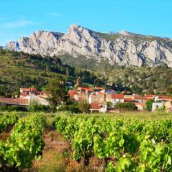 village vignes domaine vents du sud